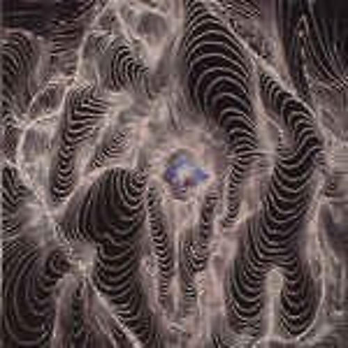 Alliance Dahga Bloom - No Curtains