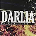 Alliance Darlia - Knock Knock EP thumbnail