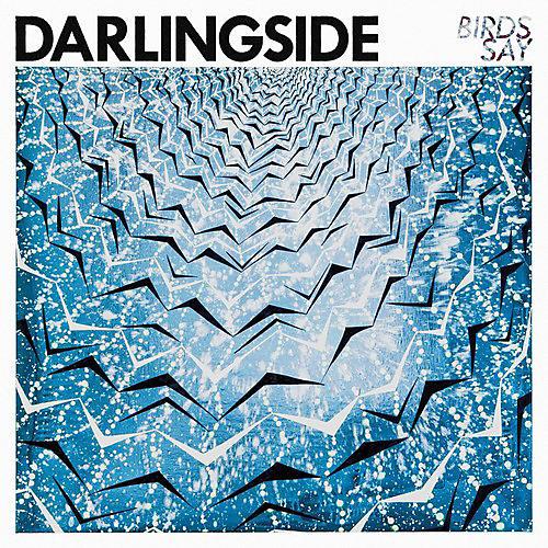 Alliance Darlingside - Birds Say