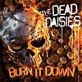 Alliance Dead Daisies - Burn It Down thumbnail