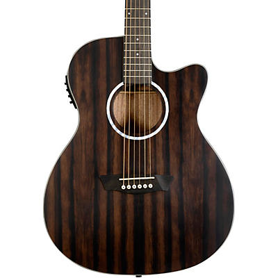 Washburn Deep Forest Ebony ACE Acoustic-Electric Guitar