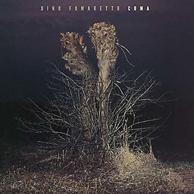 Dino Fumaretto - Coma