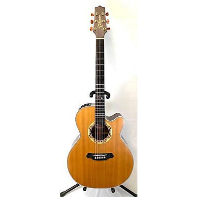 Takamine Dolphin Acoustic Guitar
