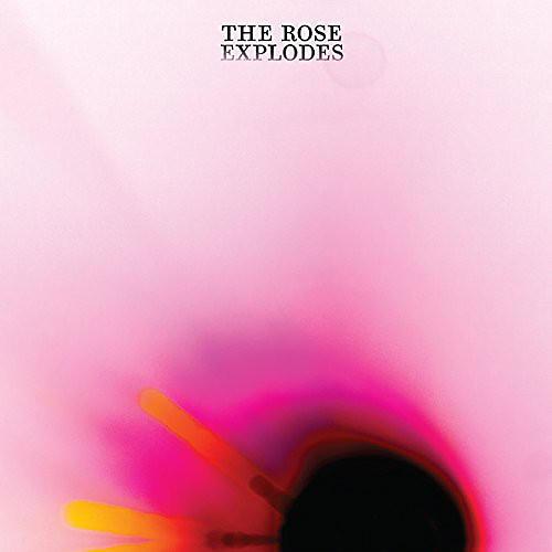 Alliance Dream Boat - Rose Explodes
