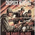 Alliance Dropkick Murphys - Gang's All Here thumbnail