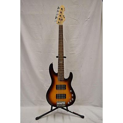 ESP E-II AP-5 5-String Electric Bass Guitar