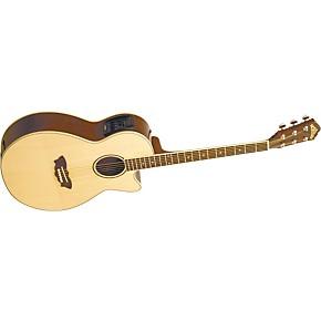 washburn ea16 acoustic electric guitar musician 39 s friend. Black Bedroom Furniture Sets. Home Design Ideas