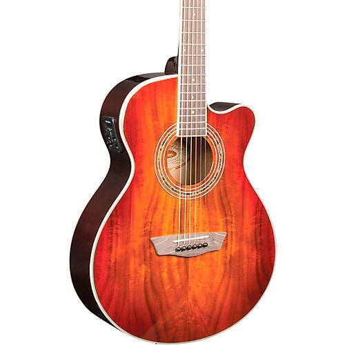 Washburn EA55G-A Festival Acoustic-Electric Guitar