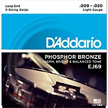 D'Addario EJ69 Phosphor Bronze Light 5-String Banjo Strings (9-20)