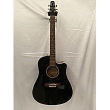 Seagull ENTOURAGE CW GT Acoustic Guitar