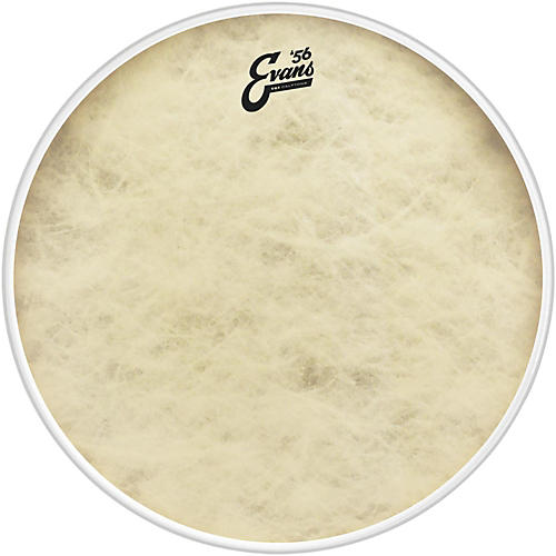 evans eq4 calftone bass drum head 24 in musician 39 s friend. Black Bedroom Furniture Sets. Home Design Ideas