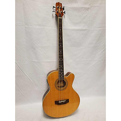 Jasmine ES50C Acoustic Guitar