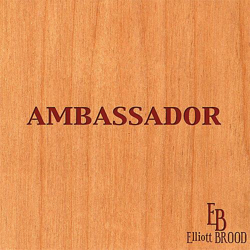 Alliance Elliott Brood - Ambassador
