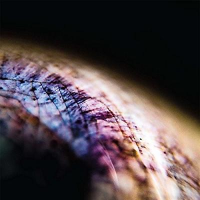 Emptyset - Skin