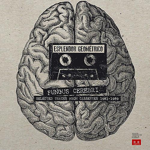 Alliance Esplendor Geom trico - Fungus Cerebri: Selected Tracks From Cassettes