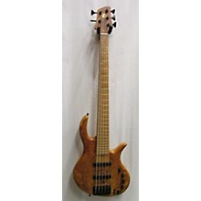 Elrick Evolution 5 Gold Series Electric Bass Guitar