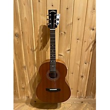 Zager Ez Play SS Mhgy Acoustic Guitar
