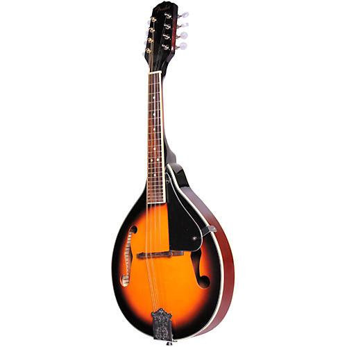 Fender FM 100 Mandolin Pack