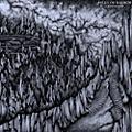 Alliance Falls of Rauros - Vigilance Perennial thumbnail