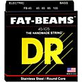 DR Strings Fat-Beams Stainless Steel Medium 4-String Bass Strings (45-105) thumbnail