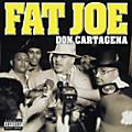 Alliance Fat Joe - Don Cartagena thumbnail