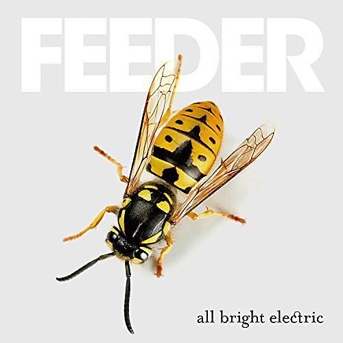 Alliance Feeder - All Bright Electric