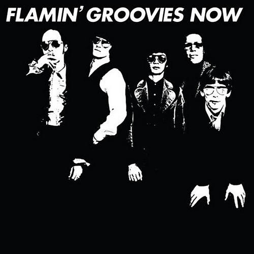 Alliance Flamin' Groovies - Now