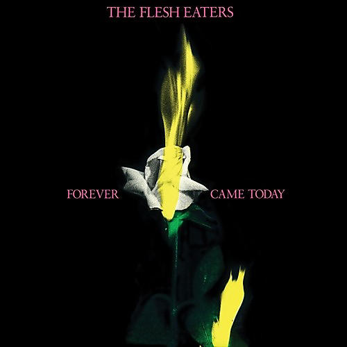 Alliance Flesh Eaters - Forever Came Today