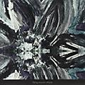 Alliance Flying Saucer Attack - Instrumentals 2015 thumbnail