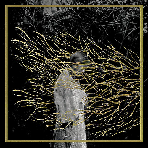 Alliance Forest Swords - Engravings