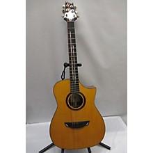 Cort Frank Gambale Acoustic Guitar