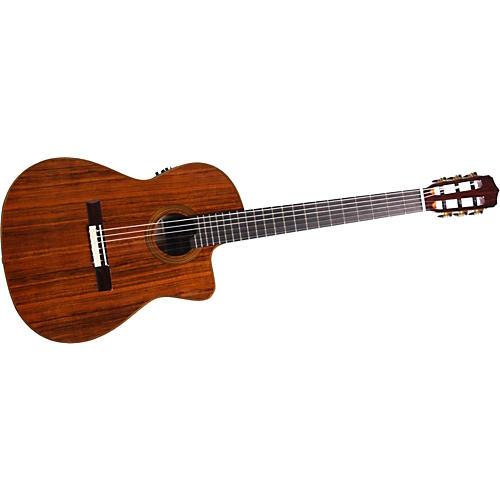 cordoba fusion 14 ov nylon string acoustic electric guitar musician 39 s friend. Black Bedroom Furniture Sets. Home Design Ideas