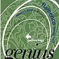Galli Strings GR100 GENIUS FLAMENCO Nylon Coated Silverplated Hard Tension Classical Acoustic Guitar Strings thumbnail