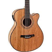 Giannini GS-40 CEQ N A/E Steel String Guitar