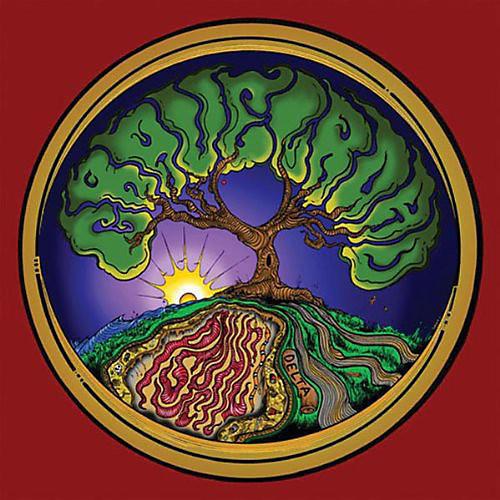 Alliance GravelRoad - Psychedelta