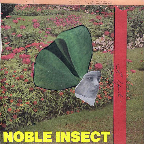 Alliance Guided by Voices - Noble Insect