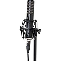 Royer R-101 Ribbon Microphone Black