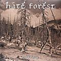 Alliance Hate Forest - Sorrow thumbnail