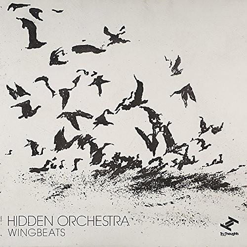 Alliance Hidden Orchestra - Wingbeats
