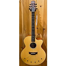 Babicz ID-jCMH-06 Acoustic Electric Guitar