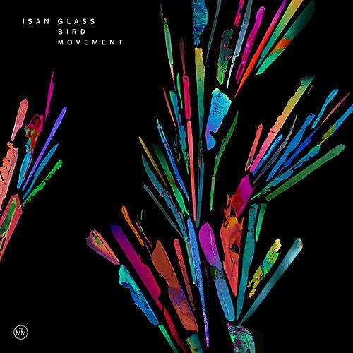 Alliance ISAN - Glass Bird Movement