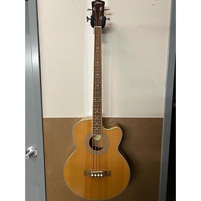 Johnson JB-24-NA Acoustic Guitar