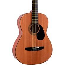Johnson JG-100 Starter Acoustic Guitar