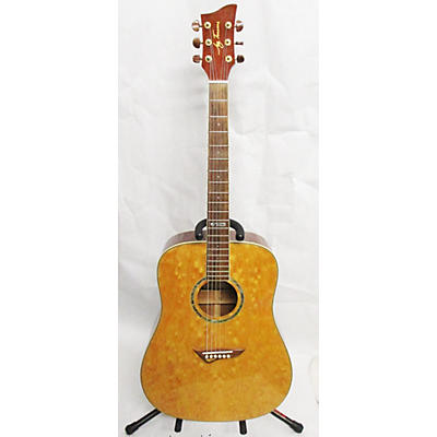 Jay Turser JTA-DQ NG Acoustic Guitar