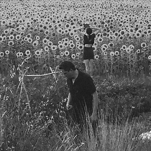 Alliance Jesu / Sun Kil Moon