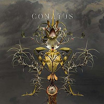 Joep Beving - Conatus