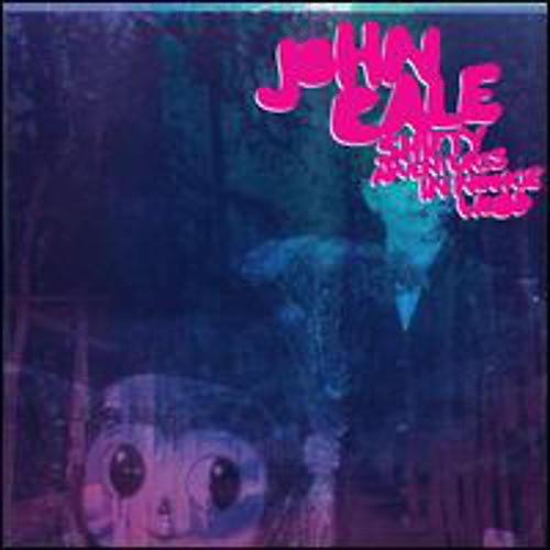 Alliance John Cale - Shifty Adentures in Nookie Wood