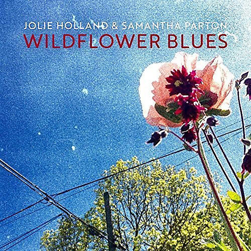 Alliance Jolie Holland - Wildflower Blues