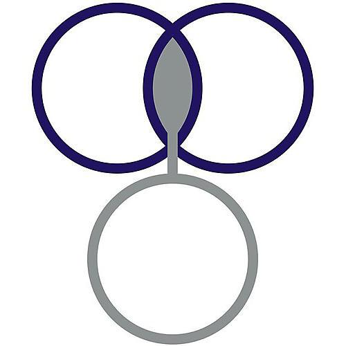 Alliance Jon Mueller - Dhraanwdn