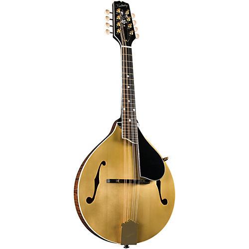 Kentucky KM-508 Artist A-Model Mandolin - Gold Top Gold Top